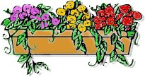 Window box as a home selling prop